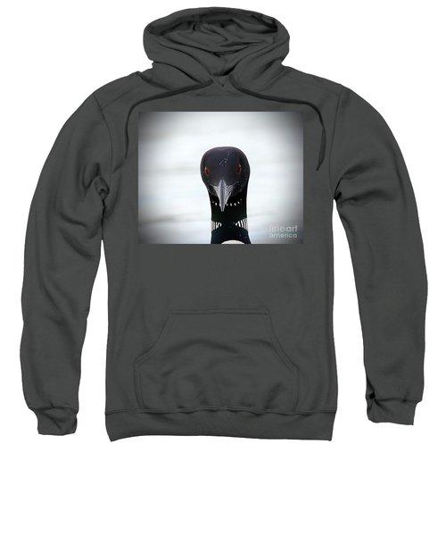 Loon Stare Sweatshirt by Peter Gray