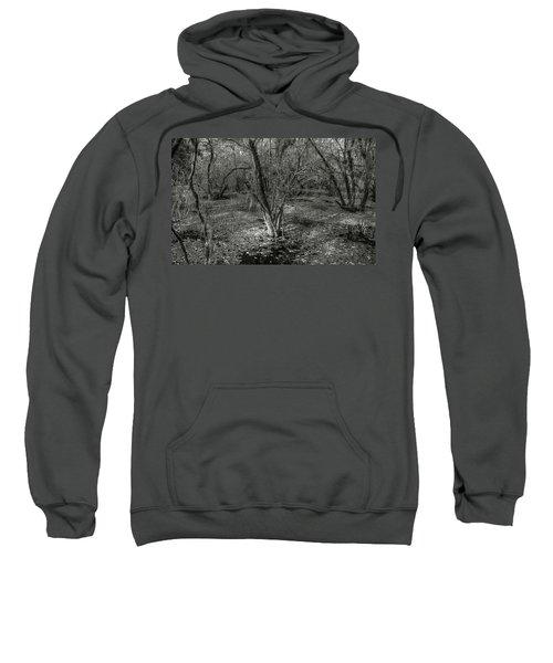 Loop Road Swamp #3 Sweatshirt