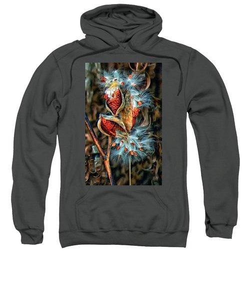Lord Of The Dance Sweatshirt