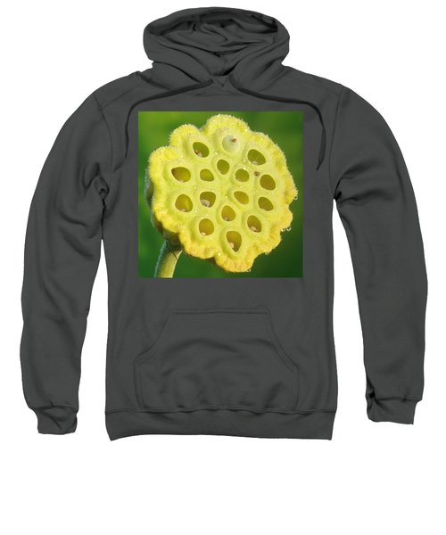 Lotus Pod Sweatshirt