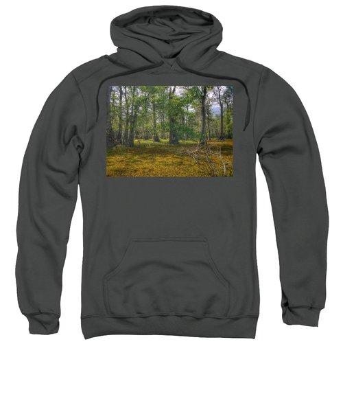 Louisiana Swamp Sweatshirt