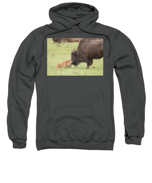 Love My Mama Sweatshirt