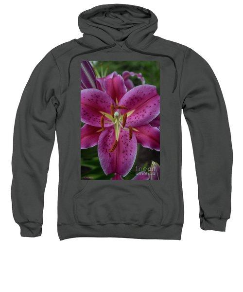 Lovely Lily Sweatshirt