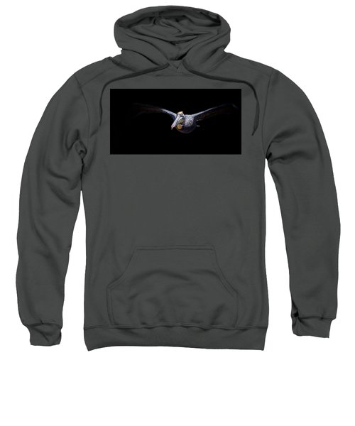 Low Flight Sweatshirt
