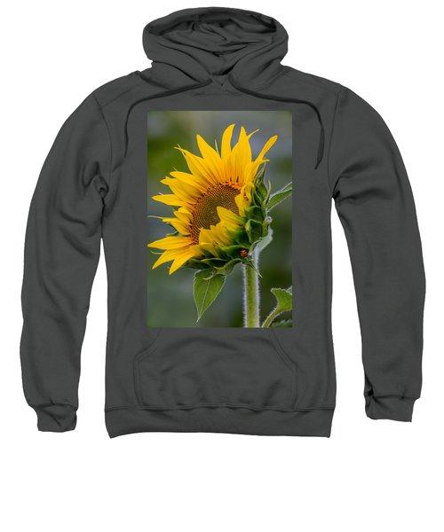 Lucky Lady Sweatshirt