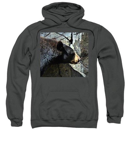 Lumbering Bear Sweatshirt