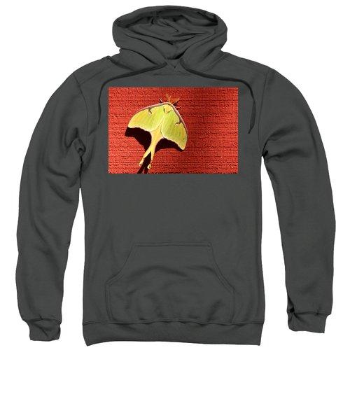 Luna Moth On Red Barn Sweatshirt