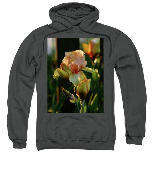 Luxurious Nature 6764 H_2 Sweatshirt