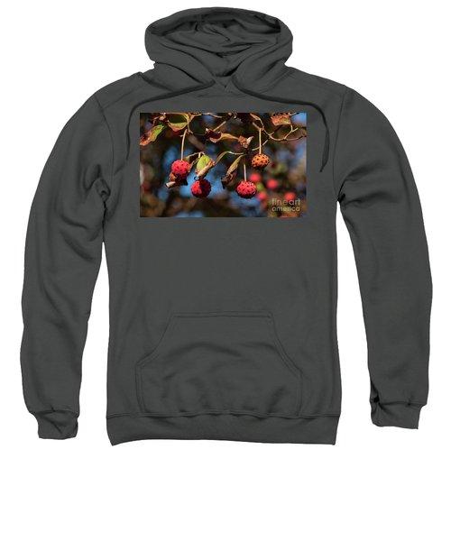 Lychees Sweatshirt