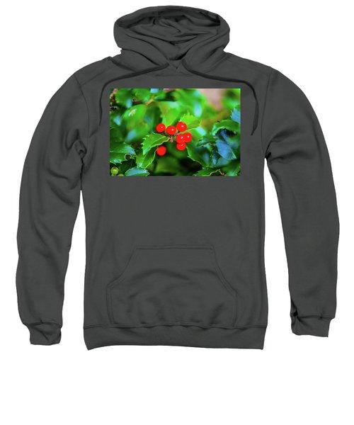 Macro Berries - 1202 Sweatshirt