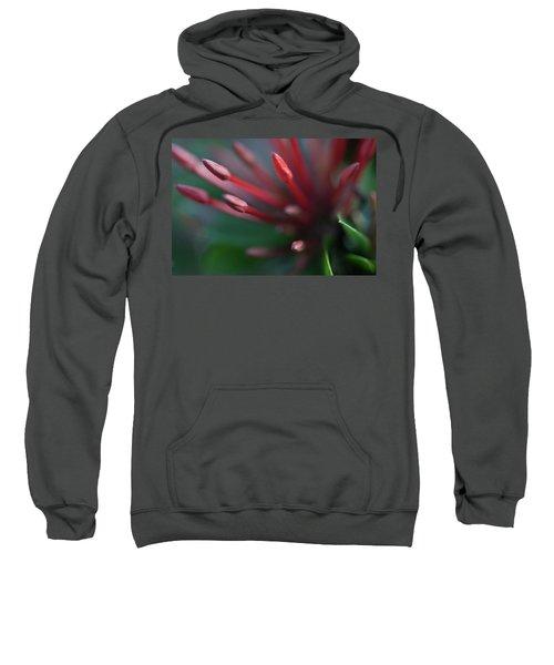 Macro Bloom - 0015 Sweatshirt
