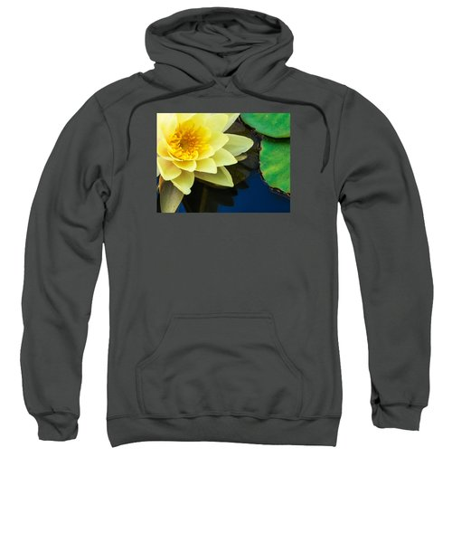 Macro Image Of Yellow Water Lilly Sweatshirt