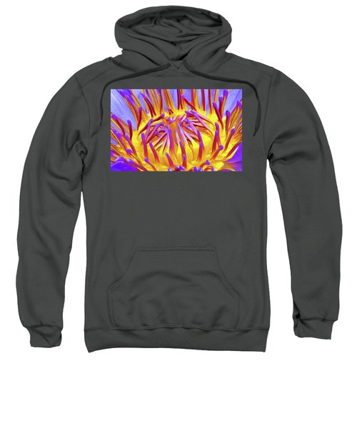 Macro's Lotus Sweatshirt