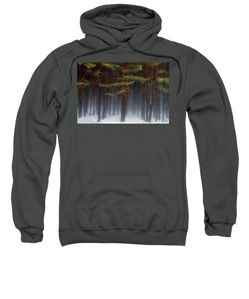 Magical Pines Sweatshirt