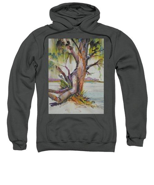 Majestic Live Oak  Sweatshirt