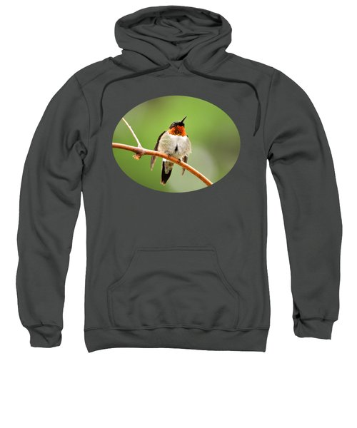 Male Ruby-throated Hummingbird Sweatshirt by Christina Rollo