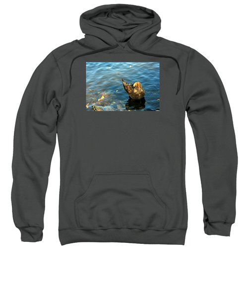 Mallard Duck In The Fox River Sweatshirt