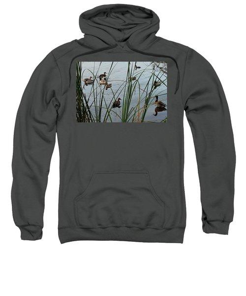 Mallard Migration Sweatshirt