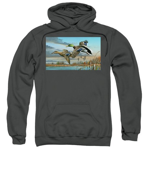 Mallards In Flight Sweatshirt