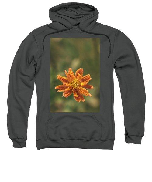 Manifesting Sundot..... Sweatshirt