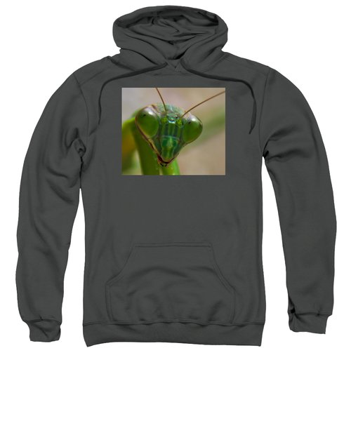 Mantis Face Sweatshirt by Jonny D