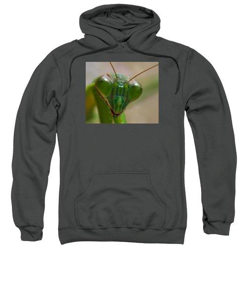 Mantis Face Sweatshirt