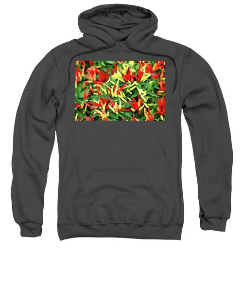 Many Peppers Sweatshirt