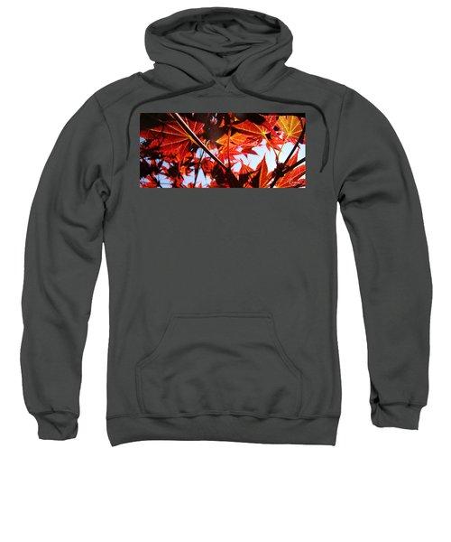 Maple Fire Sweatshirt