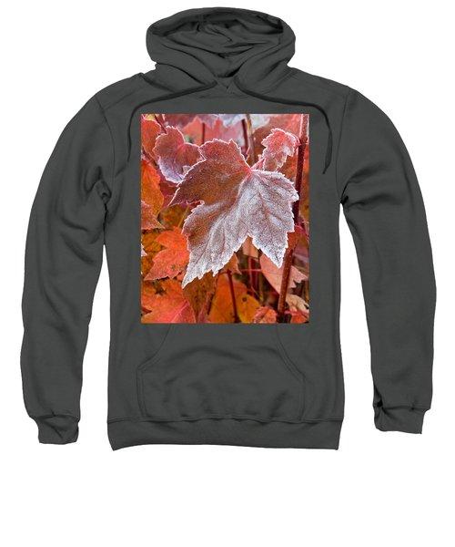 Maple Frost  Sweatshirt