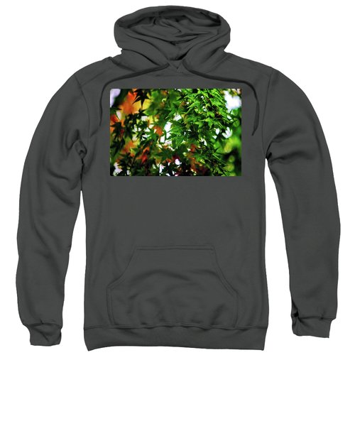 Maple In The Mist Sweatshirt