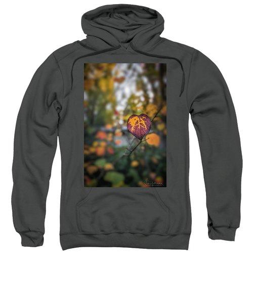 Marked Sweatshirt