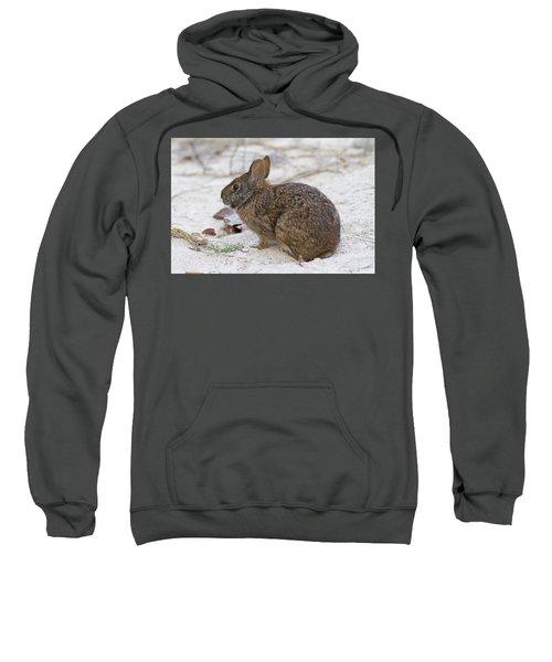 Marsh Rabbit On Dune Sweatshirt