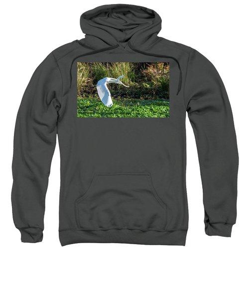 Marshy Flight  Sweatshirt