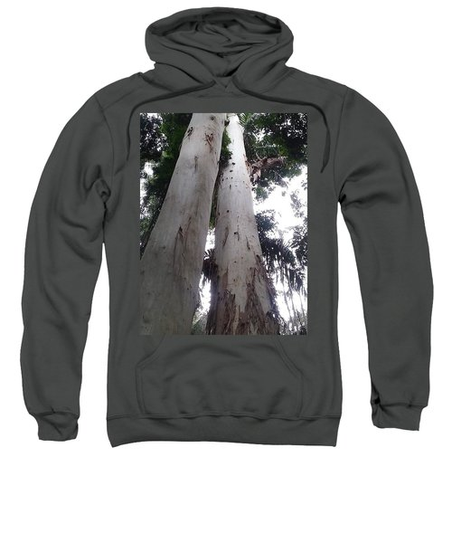 Mary Cairncross Rainforest  Sweatshirt