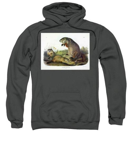 Maryland Marmot, Woodchuck, Groundhog Sweatshirt