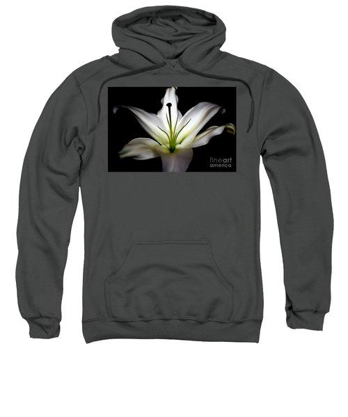 Masculinity Sweatshirt