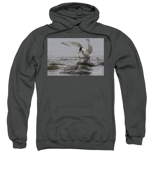 Sweatshirt featuring the photograph Mating Pair 2 by Werner Padarin