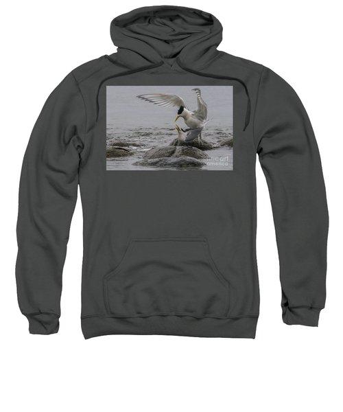 Mating Pair 2 Sweatshirt