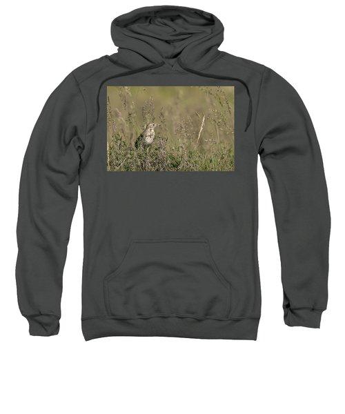 Meadow Pipit Sweatshirt