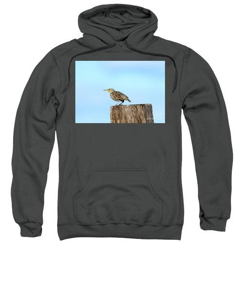 Meadowlark Roost Sweatshirt by Mike Dawson