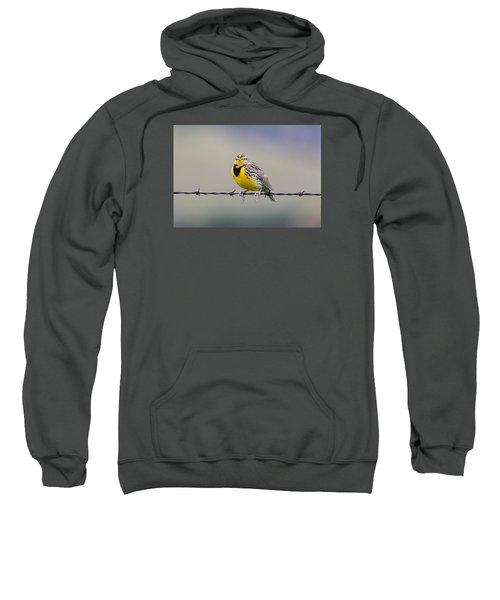 Meadowlark Stare Sweatshirt by Marc Crumpler