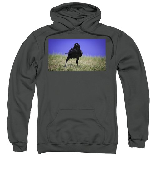 Sweatshirt featuring the photograph Menacing Crow by Chris Cousins