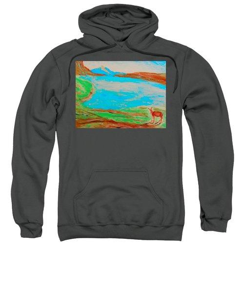 Medicine Lake Sweatshirt
