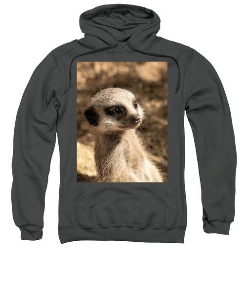 Meerkatportrait Sweatshirt