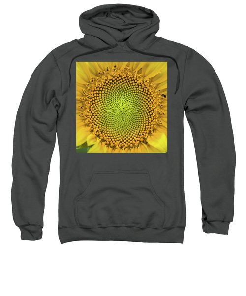 Sweatshirt featuring the photograph Mesmerizing by Bill Pevlor