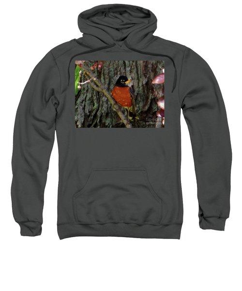 Michigan State Bird Robin Sweatshirt