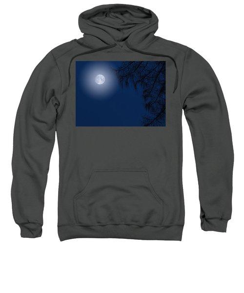 Midnight Moon And Night Tree Silhouette Sweatshirt
