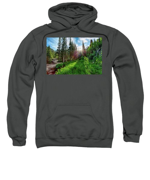 Sweatshirt featuring the photograph Midsummer Dream by David Chandler