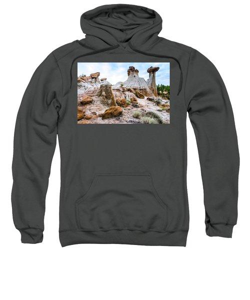 Mikoshika State Park Sweatshirt