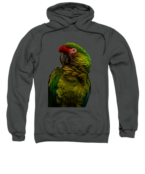 Military Macaw Sweatshirt